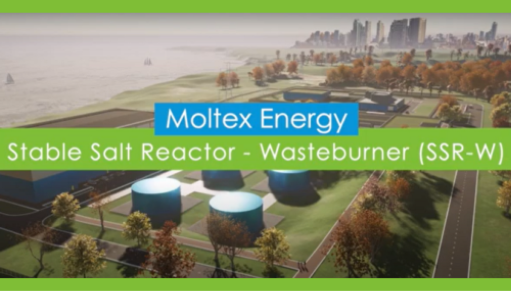 Moltex Energy Stable Salt Reactor - Wasteburner (SSR-W)